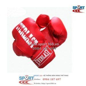 Găng Boxing Everlast giá rẻ